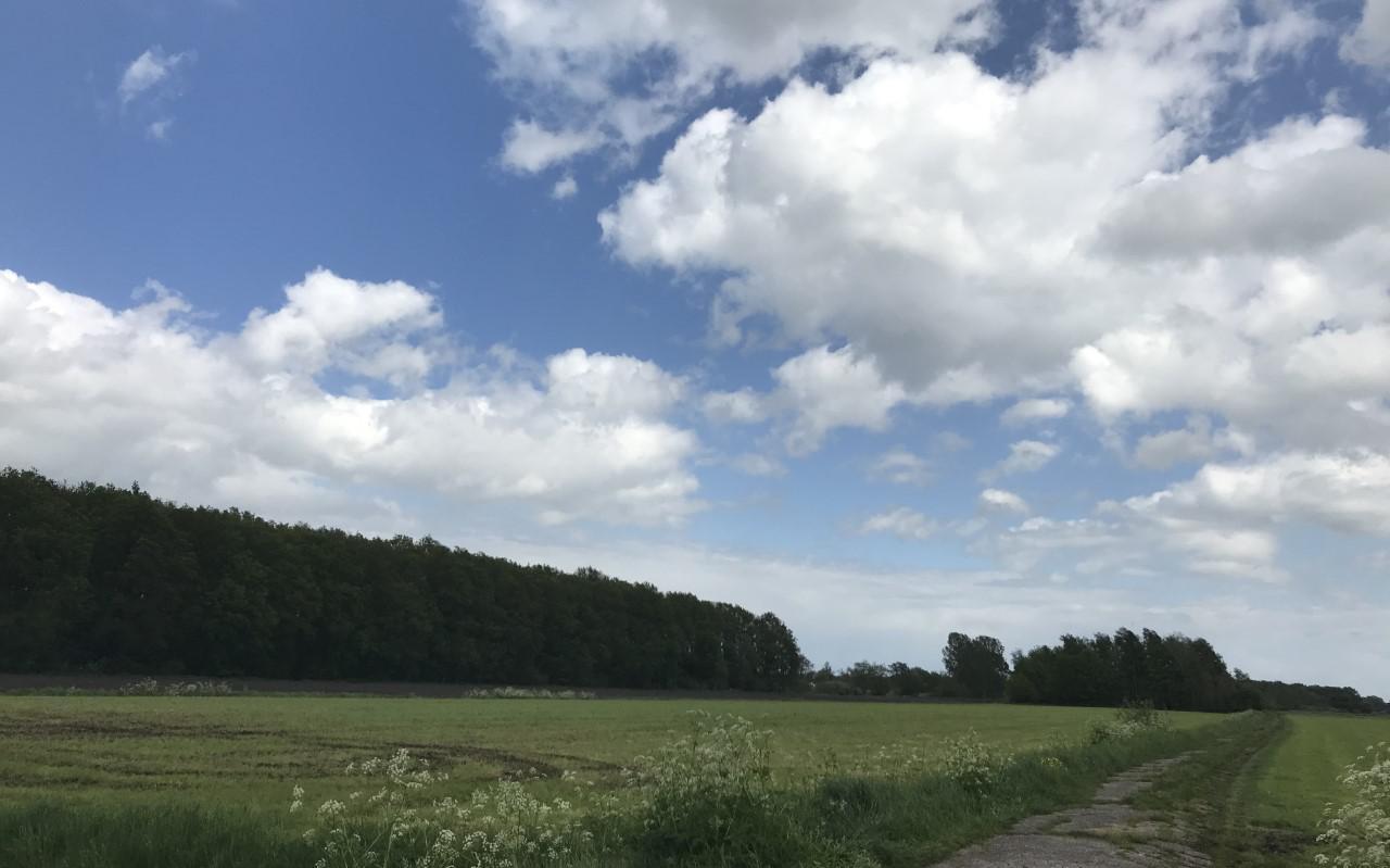De kavels op Riegmeer liggen nu nog braak, maar hoe lang?